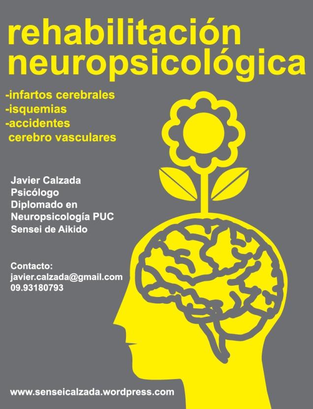 rehabilitacion neuropsicologica 2015
