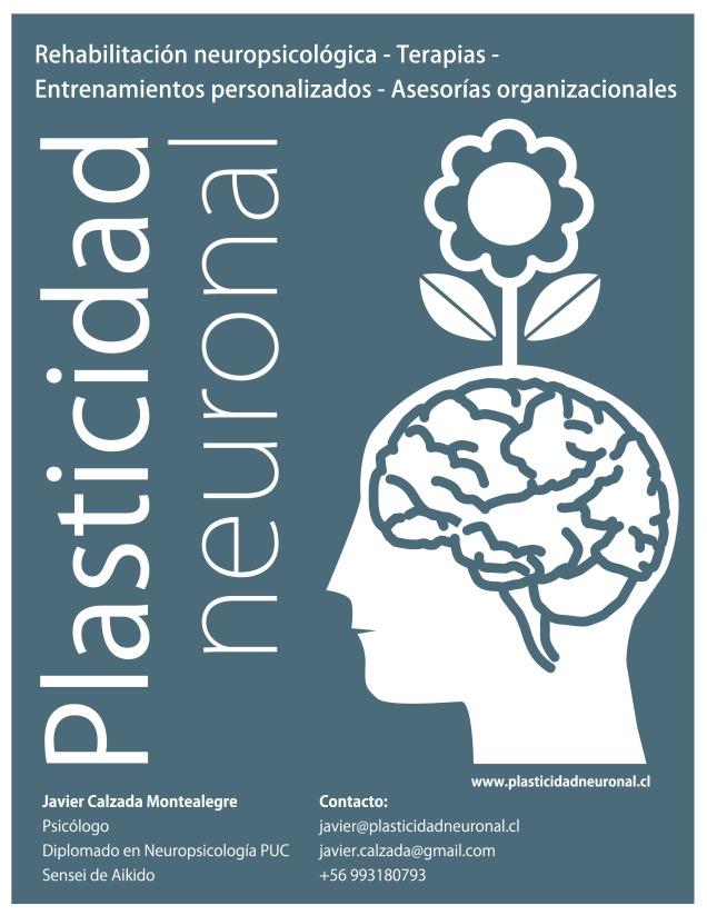 AFICHE plasticidad neuronal