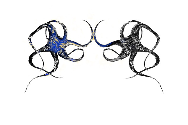 neurona espejo2